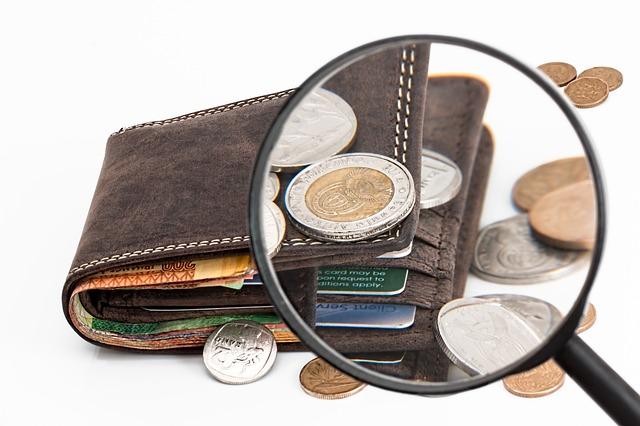 peněženka a zvětšovací sklo.jpg